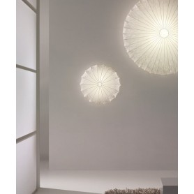 Axo Light Muse 40 Lampada Parete/Soffitto Sticks