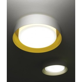 Micron Loop M5650 Lampada Soffitto/Parete 3 Luci 4 Colori