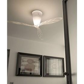 Luceplan Blow Ventilatore Soffitto Serigrafato