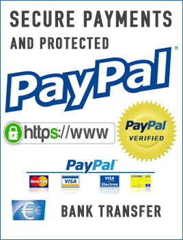 IdeaLuceOnline Secure Payments.jpg